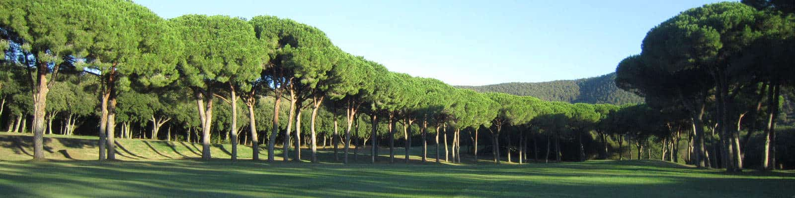 Corporate golf in Tuscany